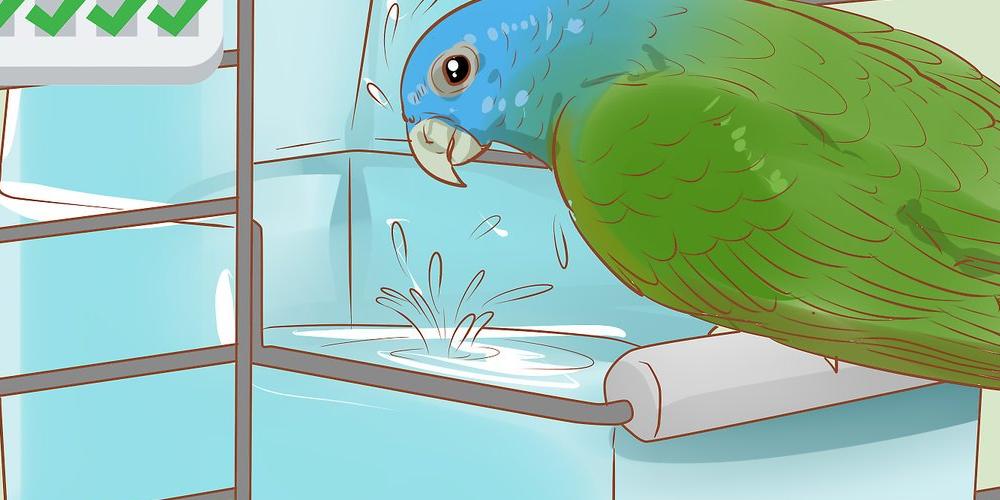 неприятный запах из клюва у попугая