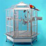 Какой должна быть клетка вольер для попугая?